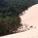 fond ecran 051109 dune pyla