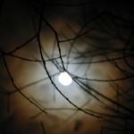 fond ecran 060312 noaillan lune