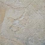 fond ecran 060521 mur chaux bernos-beaulac