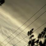 fond ecran 081217 fils electriques pins villandraut