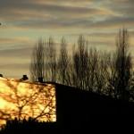 fond ecran 090306 coucher soleil edouard leclerc langon