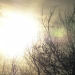 fond ecran 090413 soleil couchant nizan