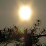 fond ecran 090430 coucher soleil lac hostens