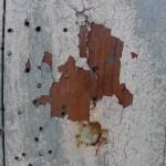 fond ecran 100703 vieux bois villandraut