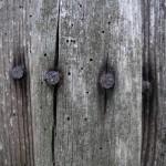 fond ecran 100705 vieux bois villandraut