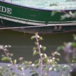 fond ecran 101119 ponton barque bords garonne saint-macaire