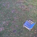 fond ecran 110102 chaise bleu feuilles mortes